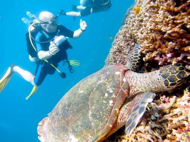 PADI IDC Phuket: join us for the best Phuket Dive Trips in Thailand with Indepth Dive Centre