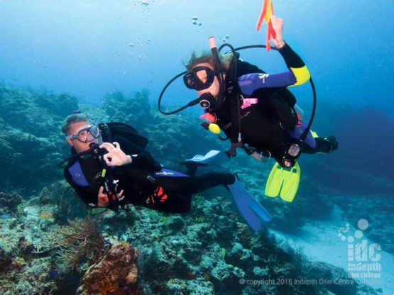 We offer the PADI Drift Diver Courses throughout the year, come join the fun!