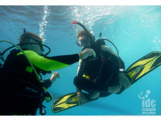PADI Instructor Course candidate demonstrating excellent control