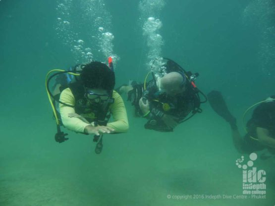 Navigating a straight line underwater is the first skill you learn on The PADI Underwater Navigation Course