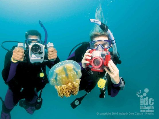 PADI DUP Adventure Dive Course one of the most popular dives in the Adventure Diver Course