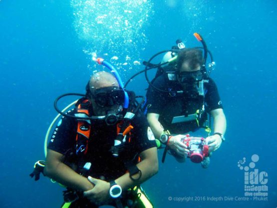 Your PADI Fish ID Course is always fun with Indepth