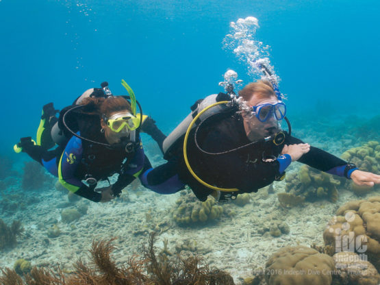PADI Underwater Navigator Specialty Course Phuket