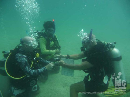 Setting your compass properly is important before you start swimming on a PADI Underwater Navigation dive