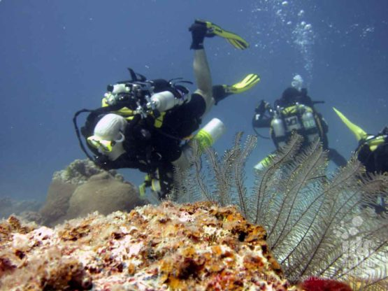 PADI Advanced Student diving on his Rebreather during the the PADI Advanced Open Water Course with Indepth Phuket