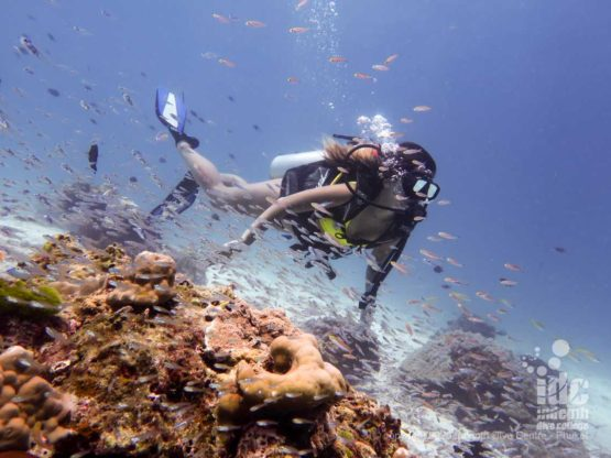 Diving in crystal clear water in Racha Noi - Phuket diving