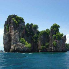 Dive Ko Bida Nok in Phi Phi with Indepth Dive Centre
