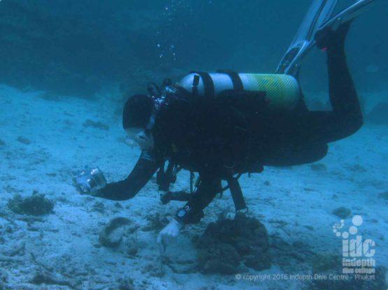 PADI Underwater Photo Course diver taking some underwater photos