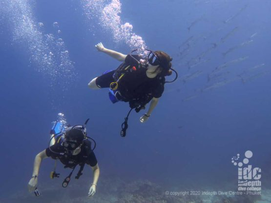 Divers at Deep Six Similan Islands Dive Site