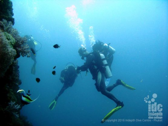 Koh Doc Mai makes a great place to scuba dive on Phuket