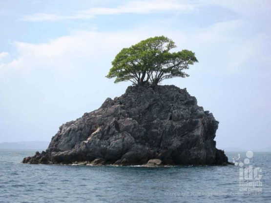 High Rock is one of the first dive sites diving the Burma Banks