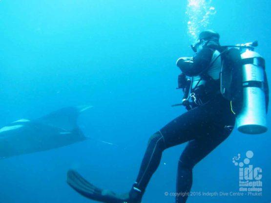 Diving with Mantas at Black Rock in Burma