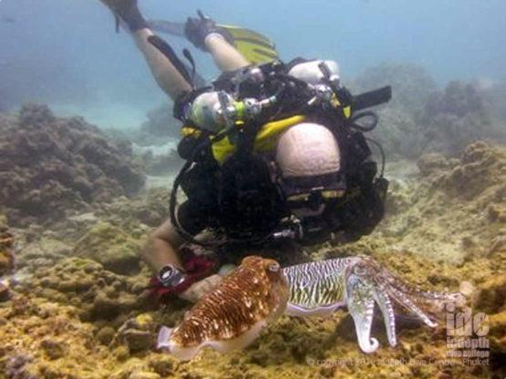 Poseidon Rebreather Dives Phuket