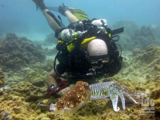 Chris Owen diving Poseidon Rrebreather at Racha Yai Bay 1 with Indepth Dive Centre
