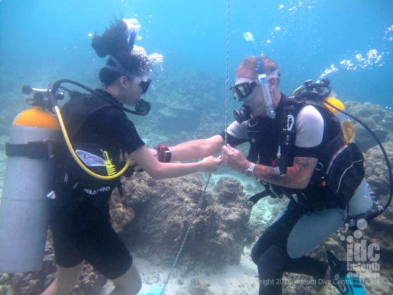 Try scuba diving with the PADI Discover Scuba Diving or DSD with your PADI instructor on Phuket