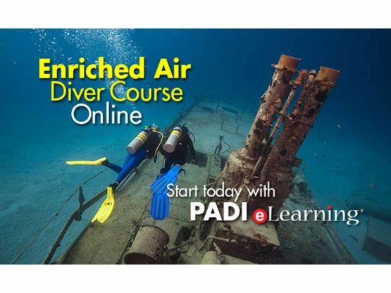 Start your PADI Nitrox Diver Course with PADI eLearning