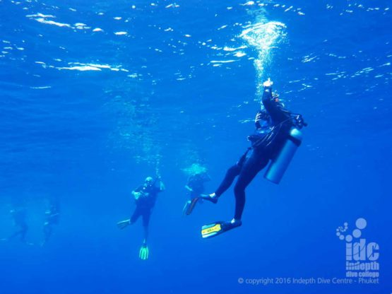 One of the ReActivate Skills on your PADI Scuba Refresher is a PADI Five Point Descent