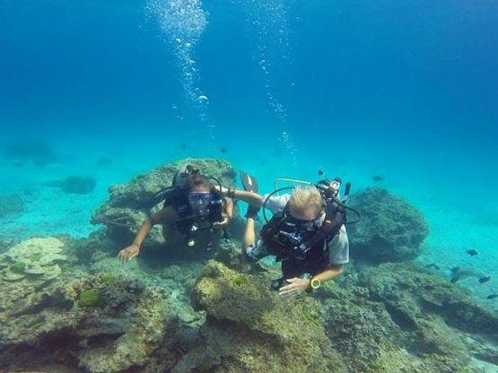 Diver having fun with Indepth Dive Centre at Hin Bida Phi Phi