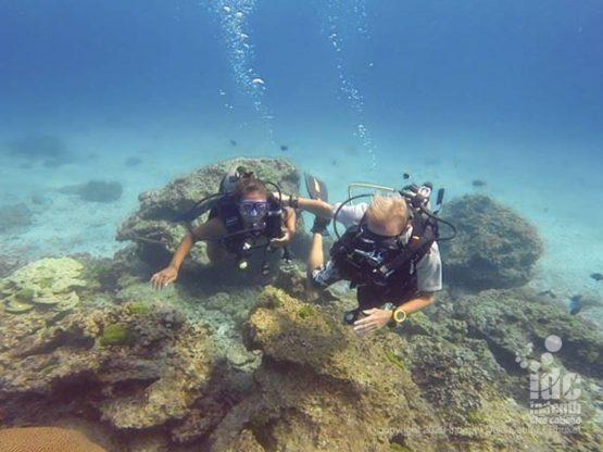 Fun divers enjoying their diving at Hin Bida Phi Phi Dive Site