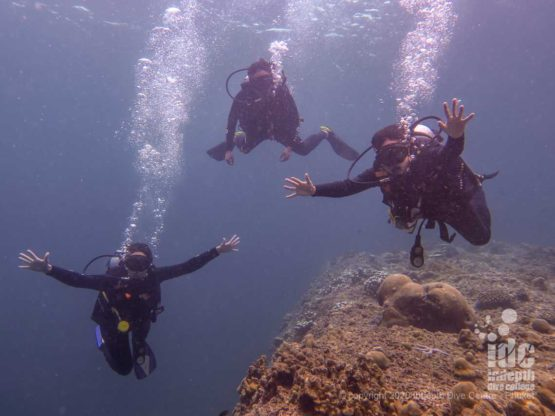 Happy divers at Phi Phi Palong Wall