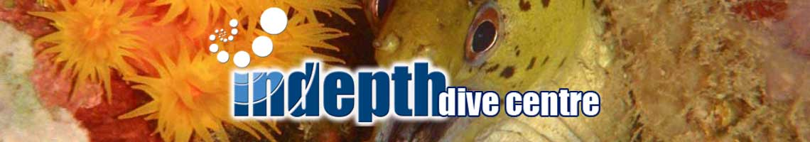 Indepth Dive Centre PADI Downloads Page has the latest PADI Forms and Documents for you to Download