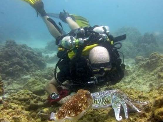 PADI Course Director Chris Owen is also a PADI Rebreather Instructor Trainer on Phuket Thailand
