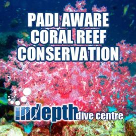 PADI Coral reef Conservationon Course on Phuket Thailand