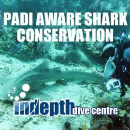 AWARE Shark Conservation Diver- Indepth Dive Phuket