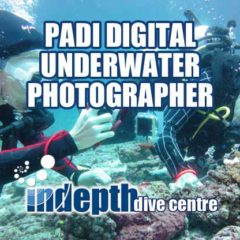 PADI Underwater Photo Course student being watched patiently by her Indepth Instructor