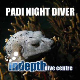 Join us on Phuket for a PADI Night Diver Course