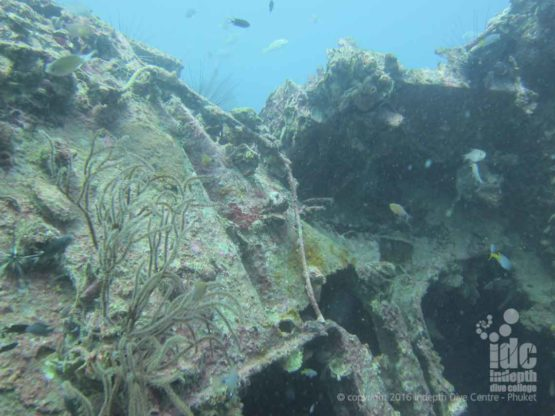 Indepth Dive Centre offers Phuket Wreck Divingg and Wreck Diving Courses