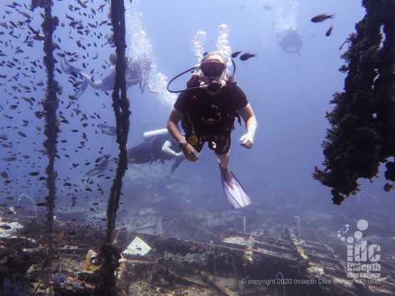 Diver at King Cruiser Wreck