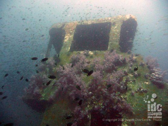 King Cruiser Wreck Dive in Phuket Thailand