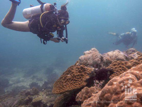 Koh Lanta Dive Sites Koh haa Lagoon