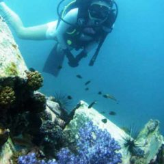 Hin Muang – South Andaman Sea – Indepth Dive Phuket