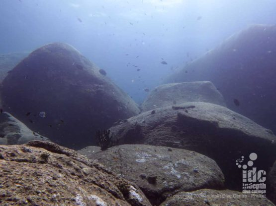 The giant granite boulders are one of the main features of North Point Dive Site