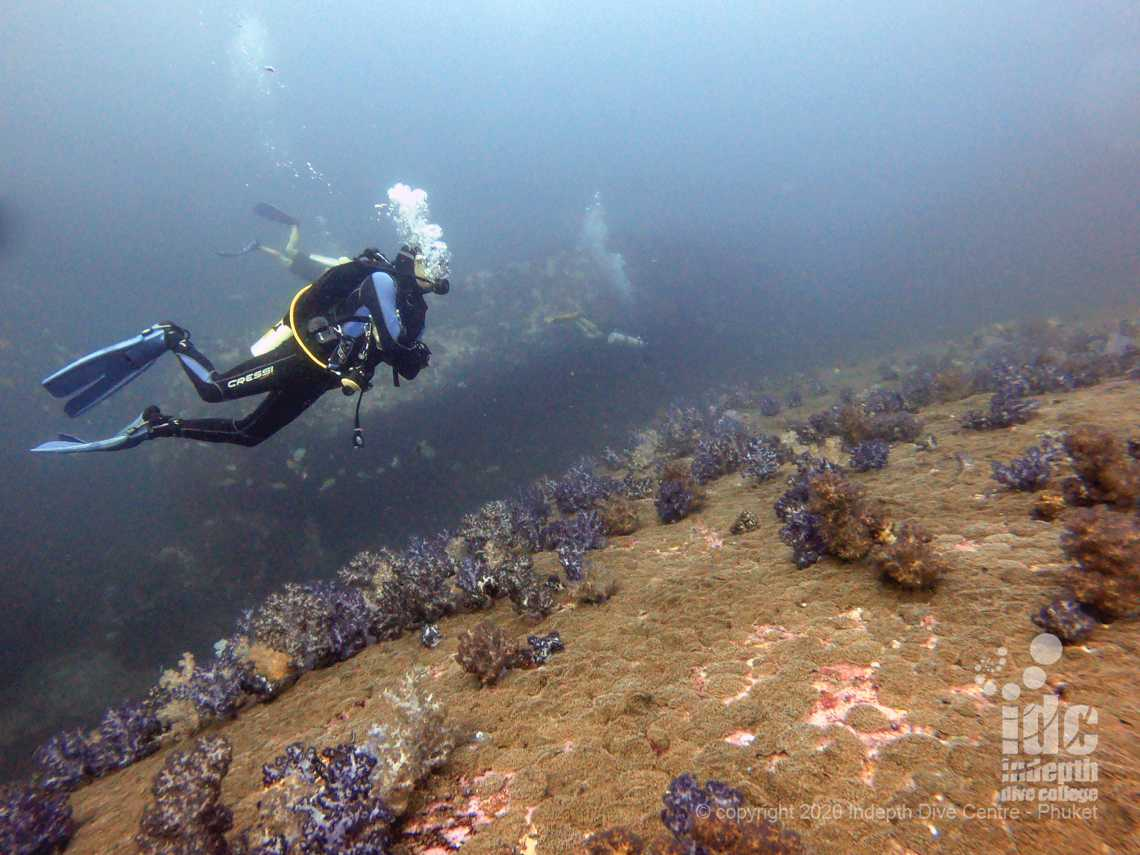Twin Cheeks at North Island is some of the best Burma Liveaboard Dive Sites