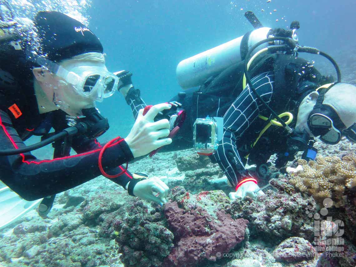 PADI DUP student being watched patiently by her Indepth Instructor