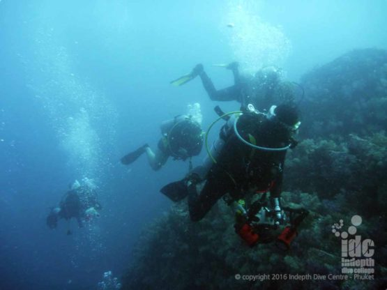 Underwater Photo Instructor course candidates diving Shark Point