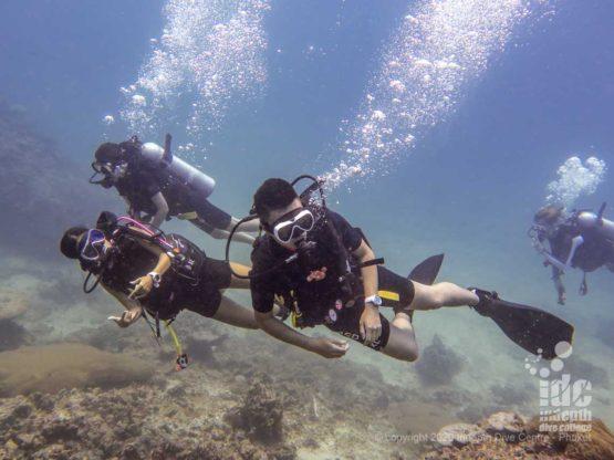 Scuba Diving at Hin Bida Phi Phi Dive Site
