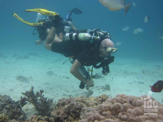 Anitas Reef is a great dive site for testinig your Poseidon Rebreather