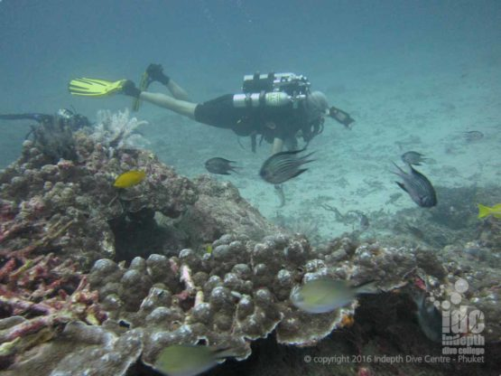Poseidon Rebreather divers at Beacon Reef with Indepth Dive Centre