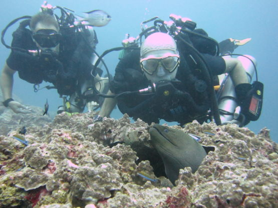 Poseidon Rebreather divers at Ko Bon West Ridge
