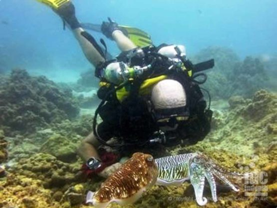 PADI Course Director and Rebreather Instructor Trainer Chris Owen diving his Poseidon Rebreather on Phuket