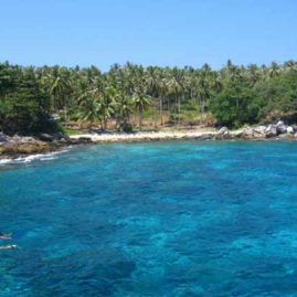 Lucy's Reef Racha Yai Bay 3 a great dive site for beginner divers