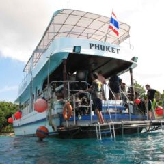 Bungalow Bay is great day out for scuba divers and snorkellers