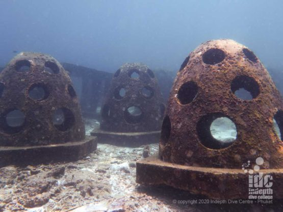 Bell-like structures - Bungalow Bay Artificial Reef in Racha Yai Island