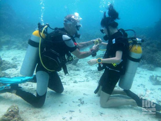 During your PADI Scuba Refresher ReActivate program you will refresh your scuba diving skills