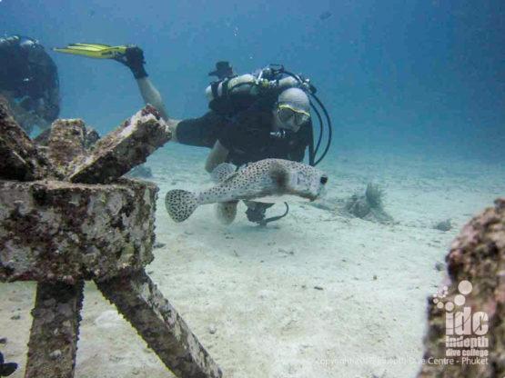Poseidon Rebreather Diving Phuket Racha Yai