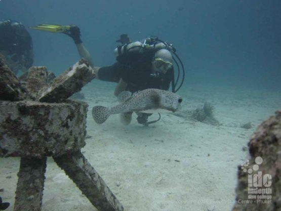 Rebeather diver diving The Cubes at Racha Yai Bay 1